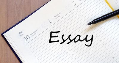 Extremely very best Essay Tips & Guide  really you must